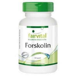 Forskolin - 90 Kapseln